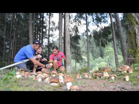 Pino Dellasega   Nordic walking nel bosco delle Fiabe