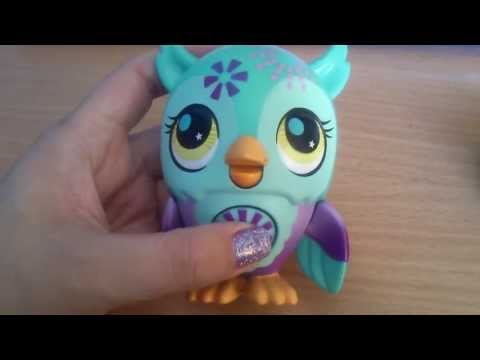 Hasbro littlest pet shop Owl singing