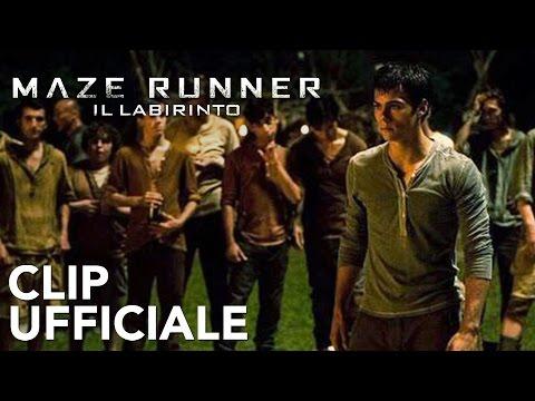 Maze Runner - Il labirinto | Clip Italiana: Rissa | 20th Century Fox Italia | 20th Century Fox