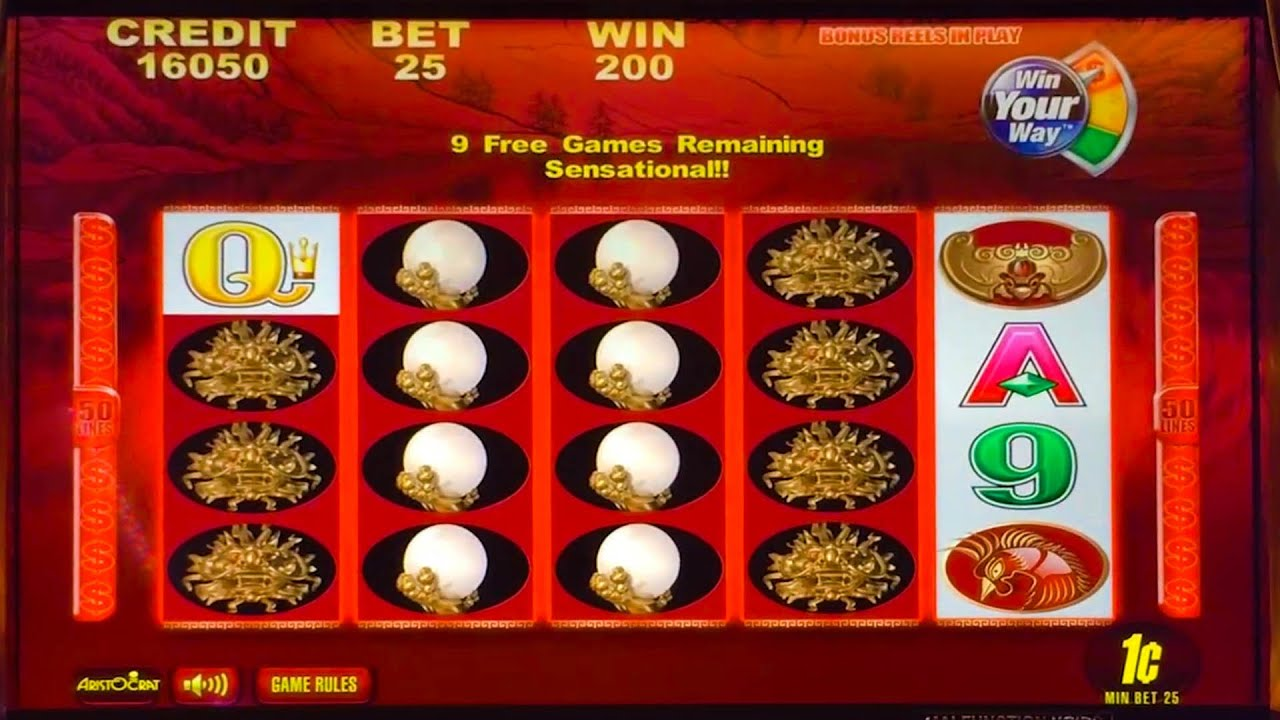 50 dragons slot machine big win