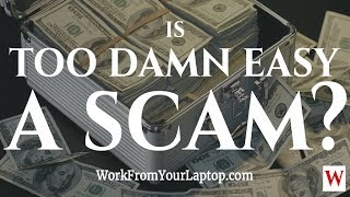 Is Too Damn Easy a Scam? Are There Cash Gifting Programs That Work? Too Damn Easy Review!