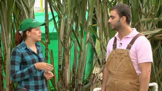Escuela de campo: Manejo del sistema hidráulico de un sistema de riego - 25 de septiembre