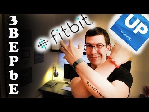 Fitbit Force или Jawbone Up24 - Что выбрать?