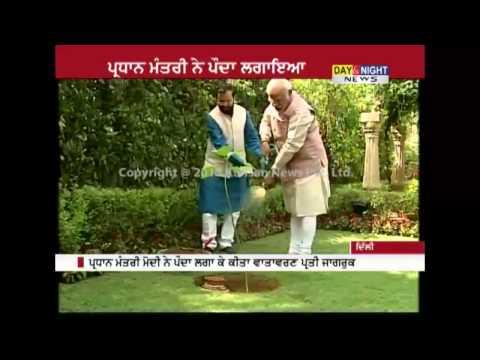 PM Modi plants Kadam tree on World Environment Day