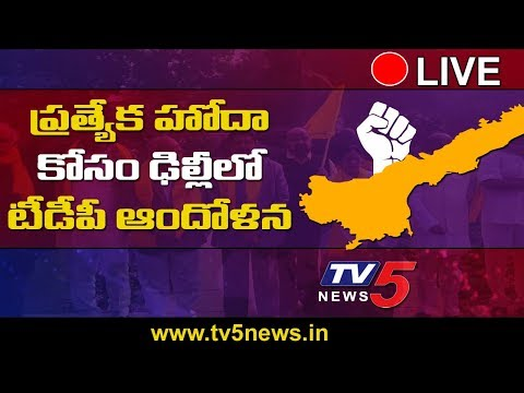 TDP MPs LIVE in Delhi | TDP MPs Protest outside Parliament | AP Special Status  | TV5 News Live