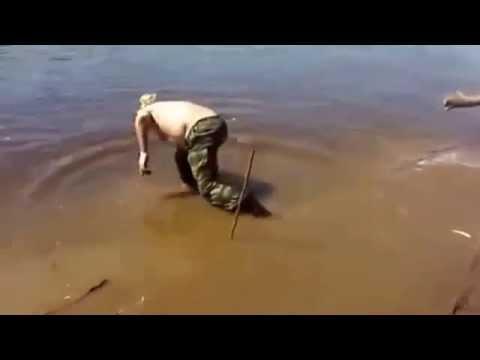 рыбацкое видео приколами