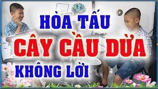 CÂY CẦU DỪA - MỚI - Hòa tấu không lời - PHONG BẢO Official