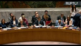 Russia calls UNSC emergency meeting over Syria strikes