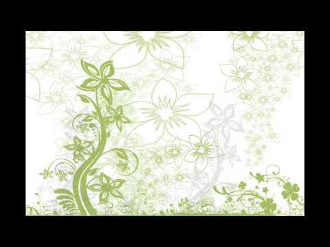 Plum - Flora