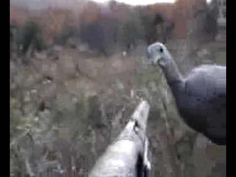 Turkey Hunting Funny Reinactment Video
