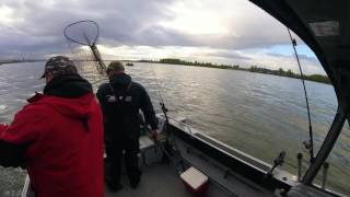 I5 Spring Salmon 2016 on the Columbia River.