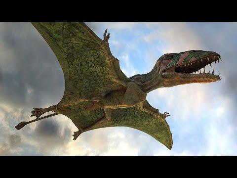 Coloriage Dinosaure Qui Se Battent.Dinosaures Du Jurassique 1 3 L Envol Des Pterosaures Youtube