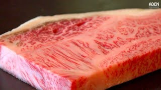 Rare Iwate Steak - Food in Japan