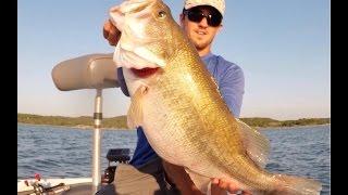 Joe Pool Giant Bass - Zoom Mag Fluke