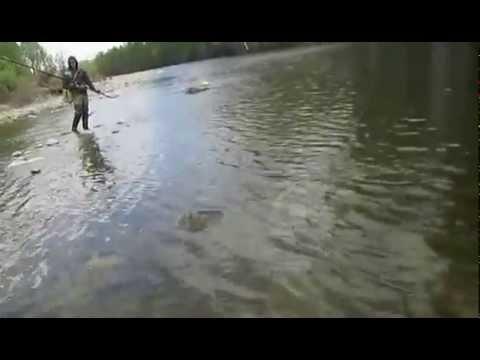 видео рыбалка в тынде