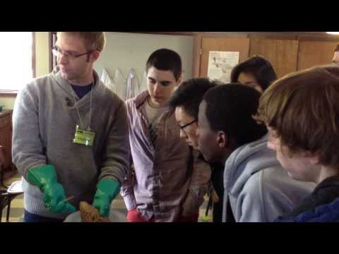 Advanced Biology at Scattergood Friends School