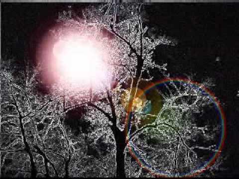 Nils Lofgren - Night Fades Away (Studio)