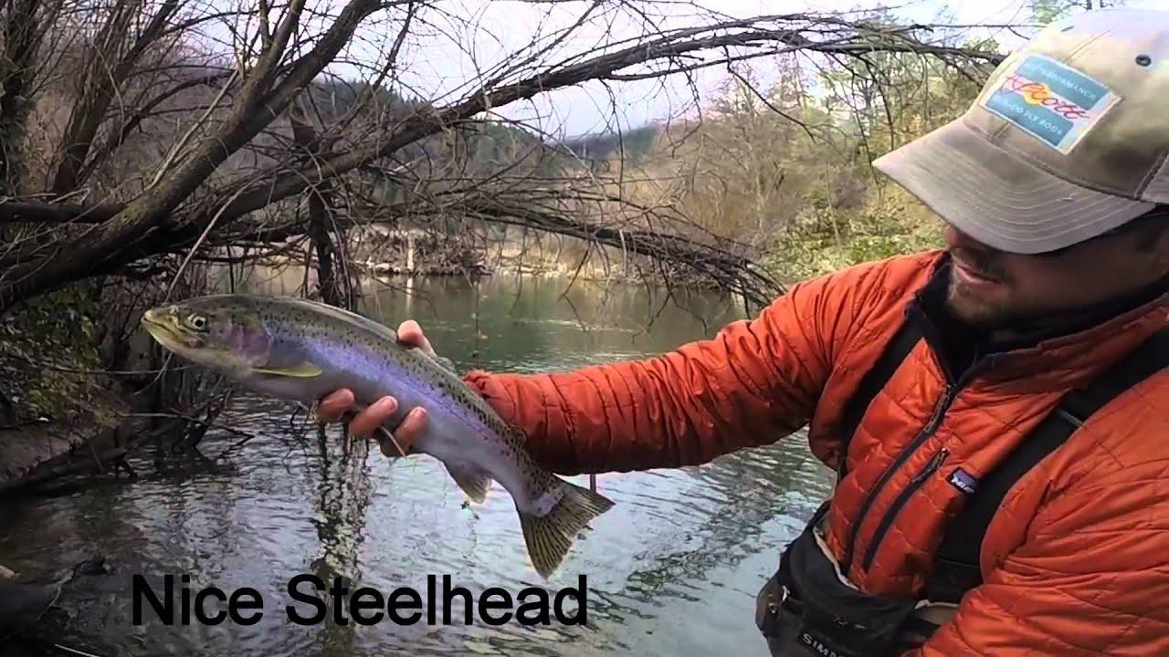 Trinity River Steelhead Trip Jan16