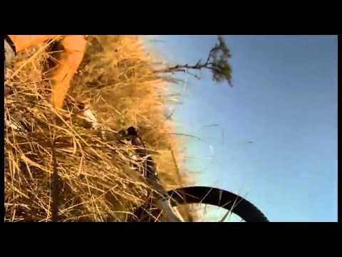Bicicletas - Se cruza con un Antílope en una ruta con bicicleta