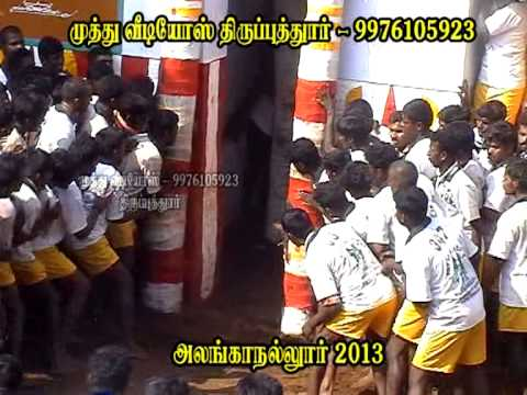 Allanganallur Jallikattu 2013 video