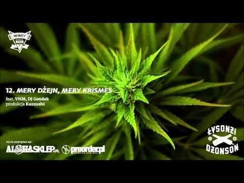 Łysonżi Dżonson - Mery Dżejn, Mery Krismes feat. VNM, DJ Gondek (prod. Kazzushi)
