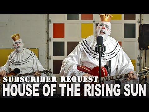 HOUSE OF THE RISING SUN - Animals - Subscriber Request