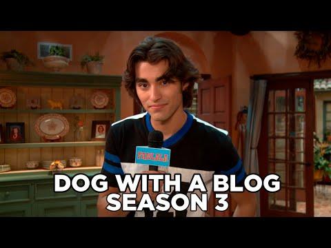 Disney's Dog With A Blog Cast Talk Season 3