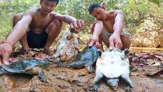 Find n Catch Turtle for Cook in Forest Eating Delicious
