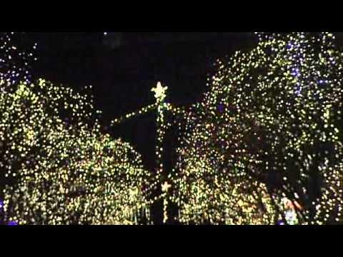 Tree Lights Up On Church Street