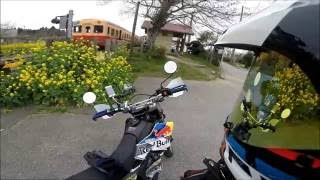 WR250X Red Bull Custom房総菜の花Ride GoproHERO3+(^_^)v