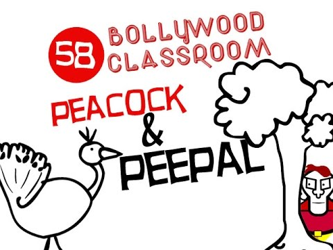 Bollywood Classroom   Peacock And Peepal   Episode 58 video