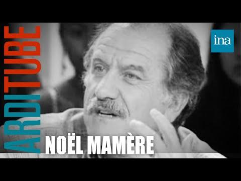 Polémique Gérard Depardieu Noël Mamère - Archive INA