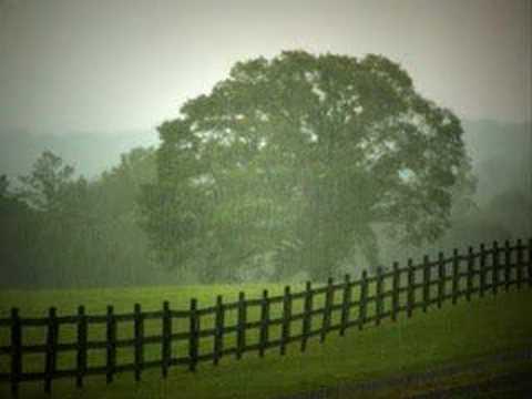 Bloom, Luka - Monsoon