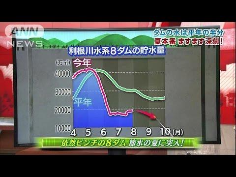 大変な夏になりそうです。関東の梅雨は明けましたが、水不足はますます深刻に・・・