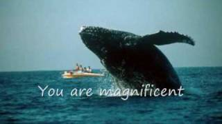 Watch Hillsong United Magnificent video