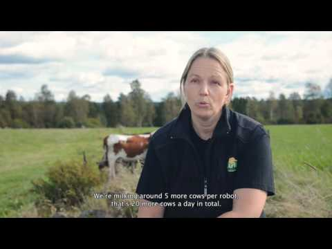 Milk more cows using DeLaval Clover liner with DeLaval VMS milking robot (with subs)