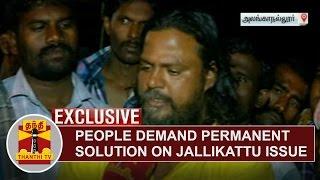 EXCLUSIVE | People demand Permanent Solution on Jallikattu Issue | Thanthi Tv