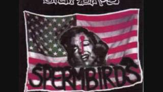 Watch Spermbirds Only A Phase video
