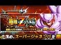 INT JANEMBA Extreme Z Battle Level 1 30 Gameplay DBZ Dokkan Battle JP Deutsch mp3