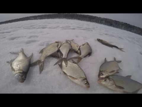 рыбалка на томской области возьми томи видео
