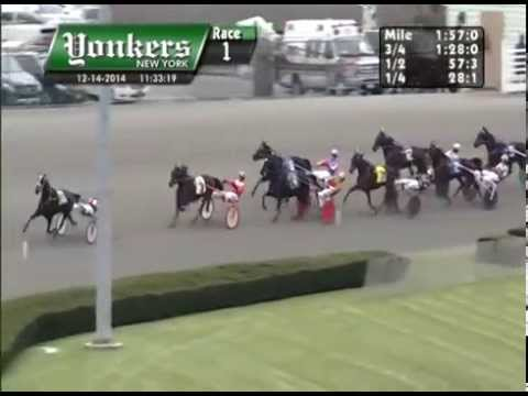 Vidéo de la course PMU PRIX EQUILEO