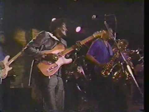Albert Collins - 1988 Austin TX - pt 2 - Honey Hush
