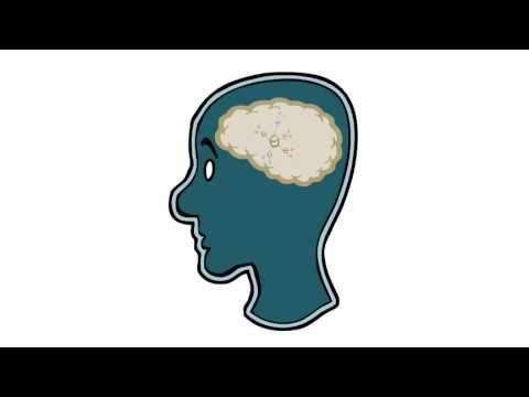 Curso de Mapas mentales: 3 - El concepto de Mapa Mental