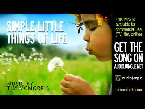 Tim Mcmorris - Simple Things Of Life