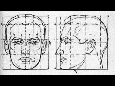 Видео как научиться рисовать человека