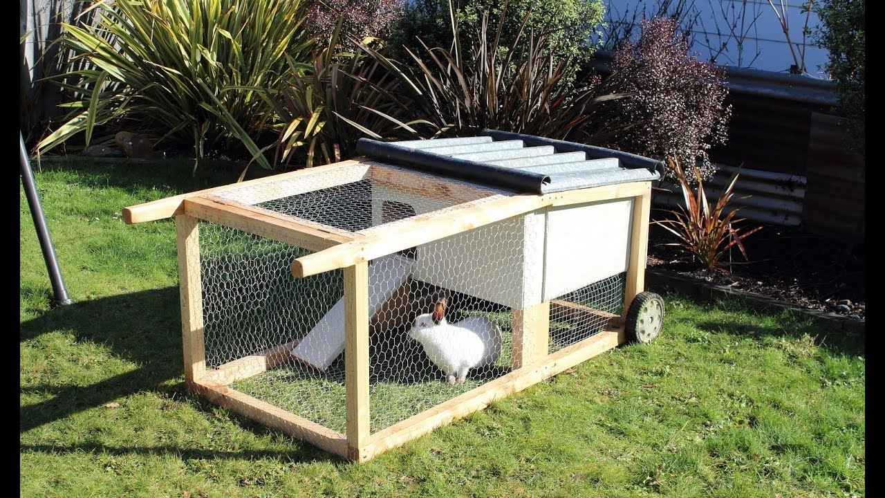 How To Build A House on wheels For Rabbits Guinea Pigs