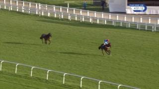 Jockey Mistakes Winning Post and Loses Race
