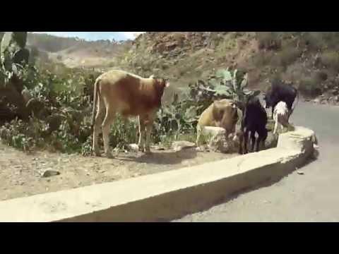 ERITREA: Drive to Redsea coast of Massawa via Asmara Part 5