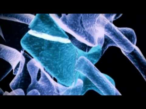 Stemedica Cell Technologies - Documentary