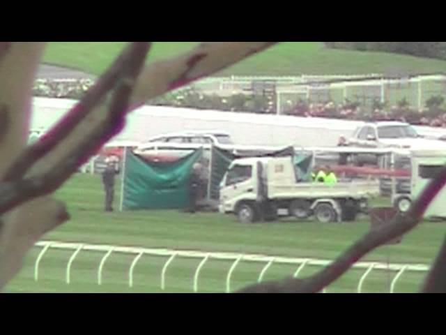Scenic Buzz killed at Sandown Racecourse 17th April 2013 RIP